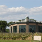 A museum in the middle of a vineyard