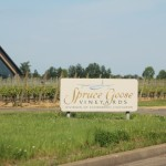 Spruce Goose Vineyards