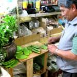 Preparing nopales (prickly pear cactus)