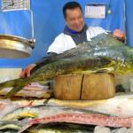Fresh dourado (dolphinfish)