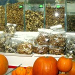 Pumpkins and mushrooms