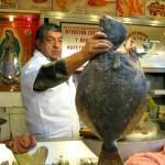 Healthy flounder