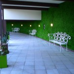Hip Green Wall at the Riviera Palm Springs Hotel
