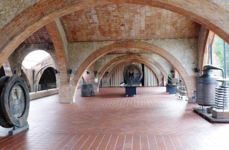 Codorniu, The Oldest Cava Winery