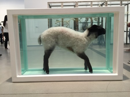 """Away from the Flock"" is a sheep suspended in formaldehyde and a glass-walled tank"
